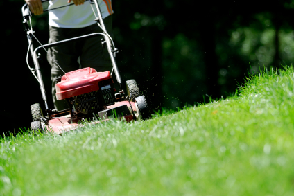 Help needed: Grass mowing