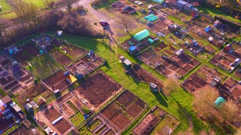 South Marston Allotments
