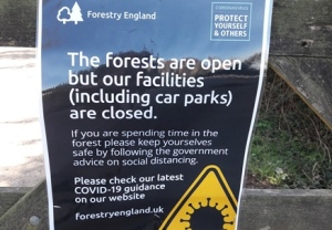 Forestry England COVID-19 notice